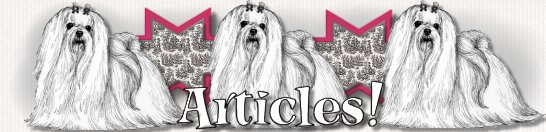 Articles by Doggie Bow Ties