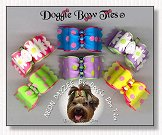 Dog Bows Full Size-Neon Dayzee