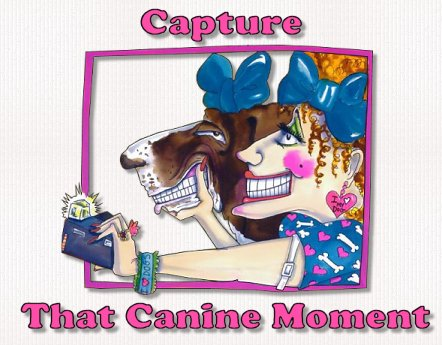 Capture that Canine Moment-photography