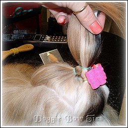 Image: With your dog bow in place, gather each section together into one topknot and place a final band above the bow, wrap the band at least twice to hold the topknot.