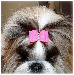 How To Make A Simple Casual Shih Tzu Topknot By Doggie Bow