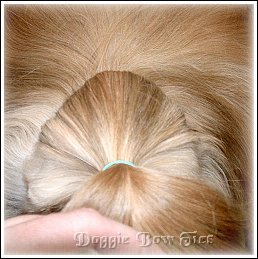 Image: Your section of topknot hair will be in a triangular shape