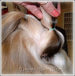 Image: A gentle front poof. This secures your front section to the head and will make your front section poof out in front.