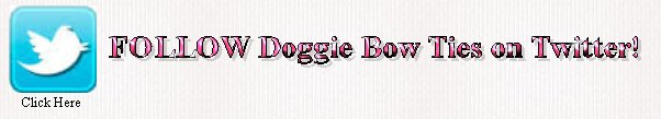Follow Doggie Bow Ties on Twitter